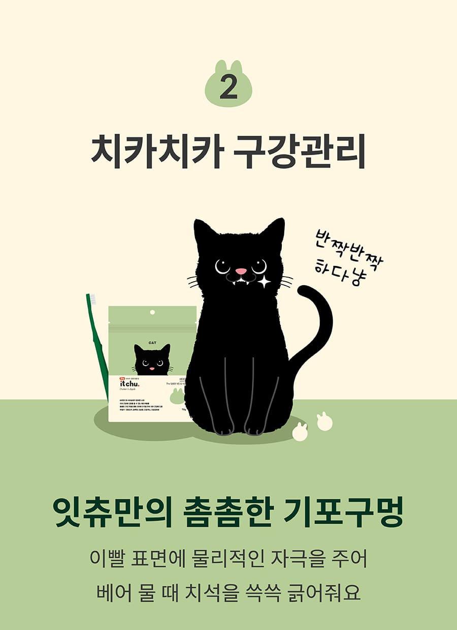 it 더 잇츄 캣 (치킨&사과/황태&고구마/연어&레드비트)-상품이미지-10