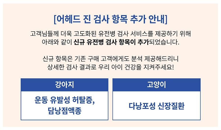[특별세트] 어헤드진+어헤드-상품이미지-0